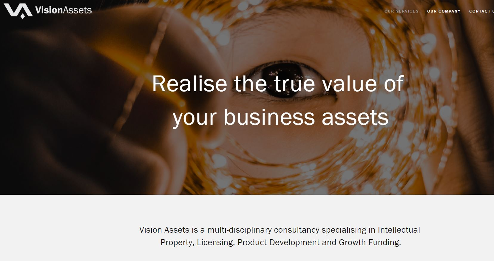 Vision Assets